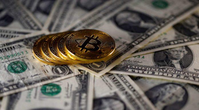 ¿Algún término técnico relacionado con la moneda bitcoin?