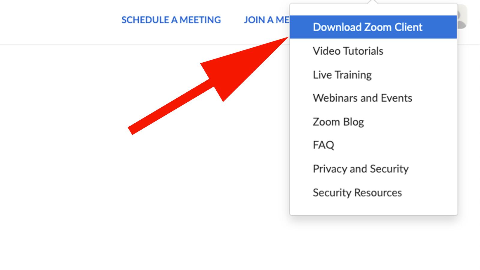 Cómo configurar y usar Zoom en Mac: Descargar la aplicación