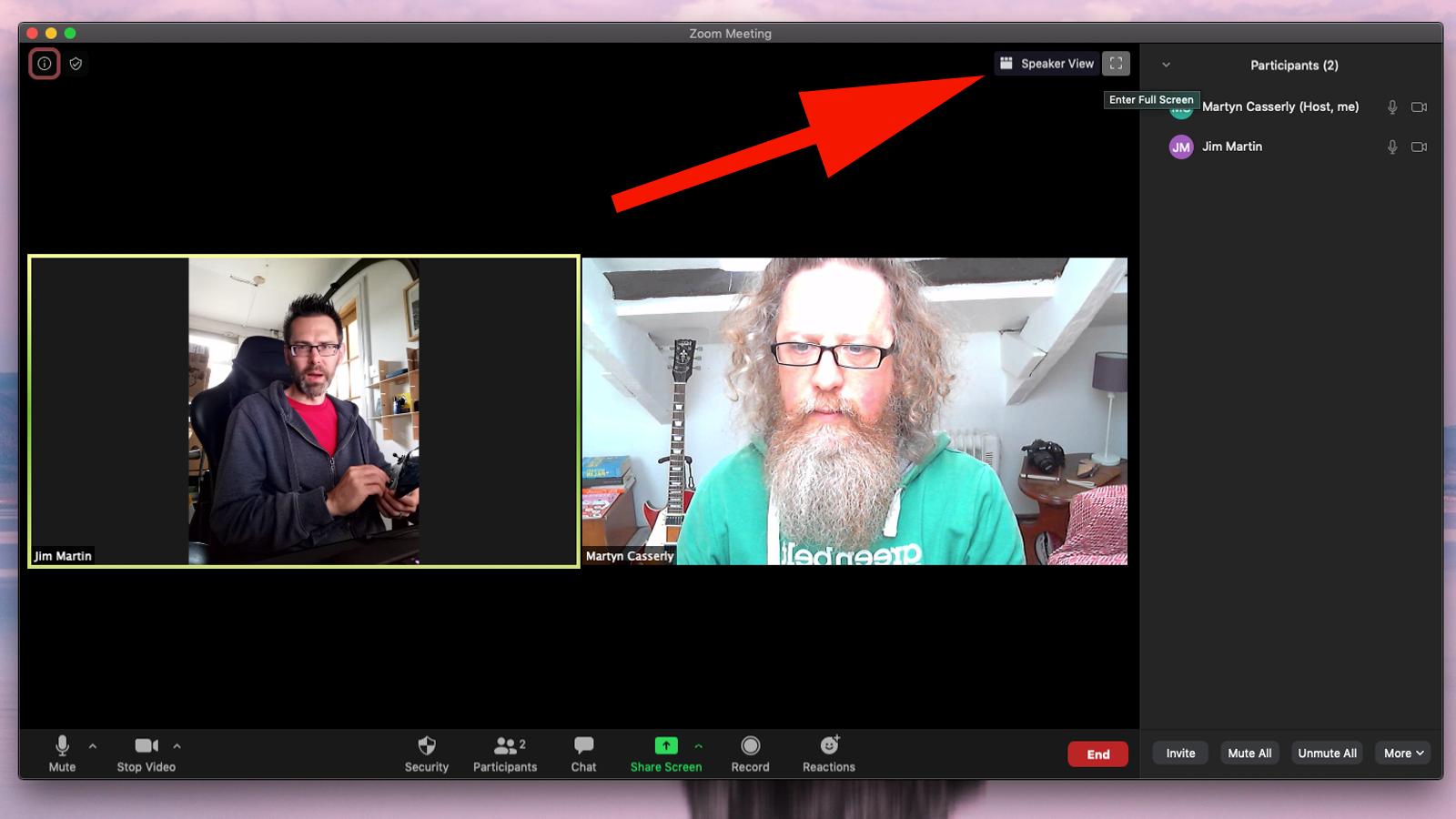 Cómo configurar y usar Zoom en Mac: Cambio de vistas