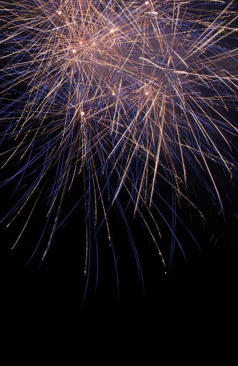 fireworkportrait.jpg