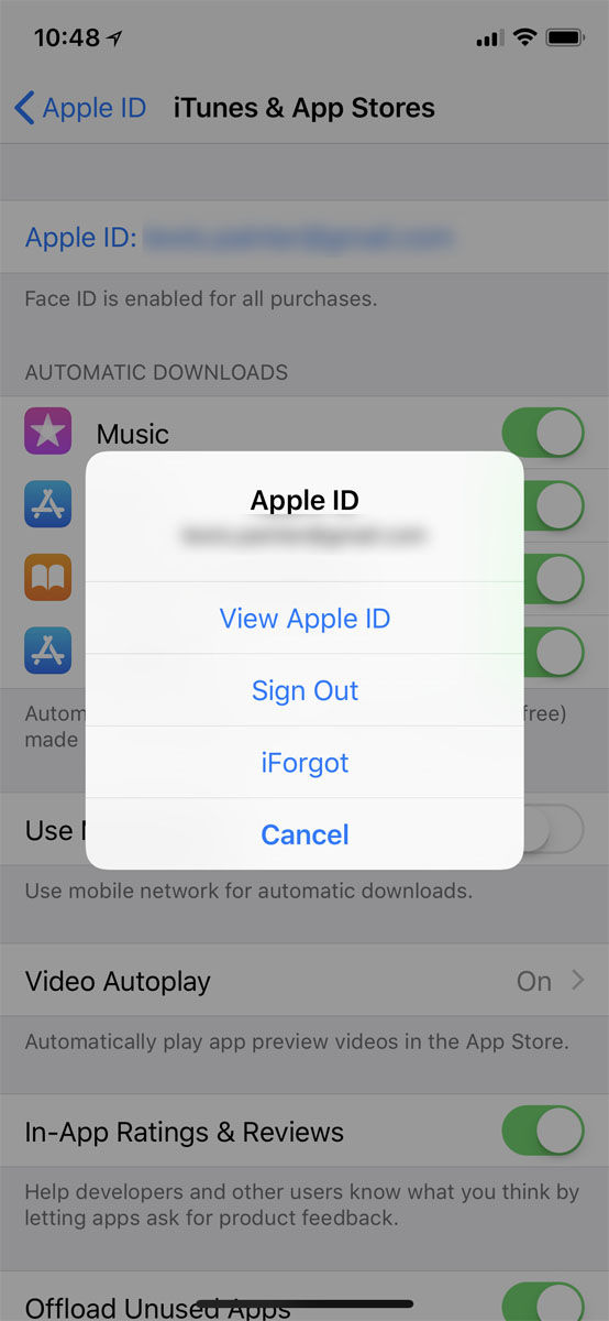 Cómo cancelar una suscripción en un iPhone: Ver ID de Apple