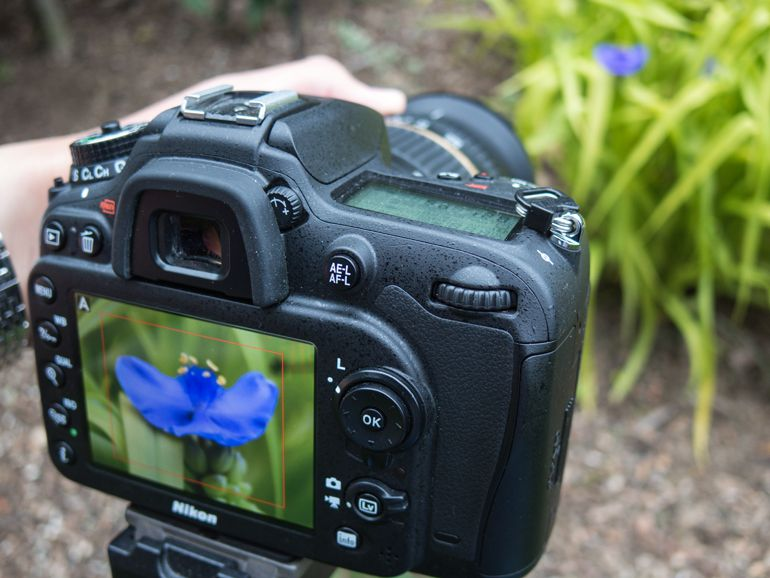 how-to-dslr-video-focus.jpg