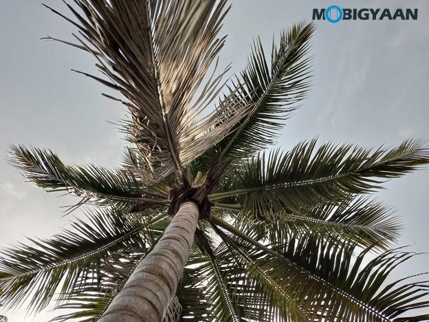 Moto-E6s-Camera-Samples-2