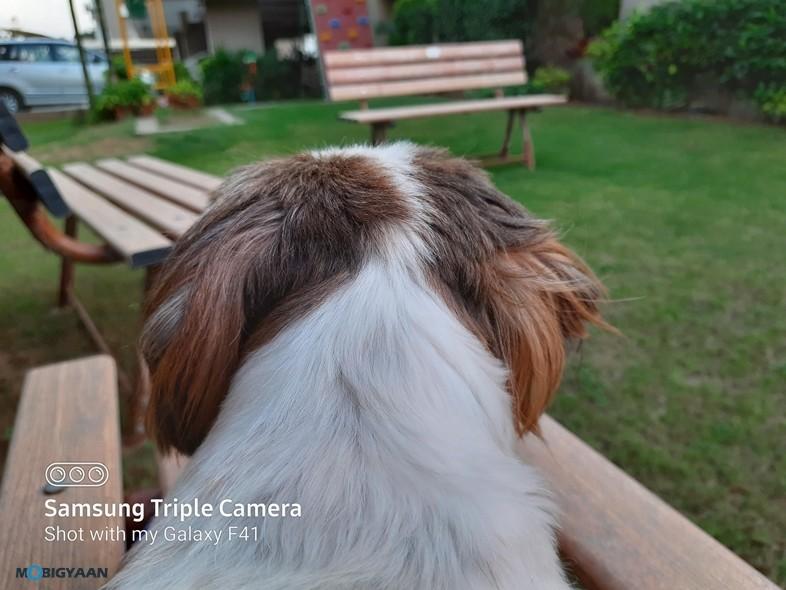 Samsung-Galaxy-F41-Camera-Samples-14