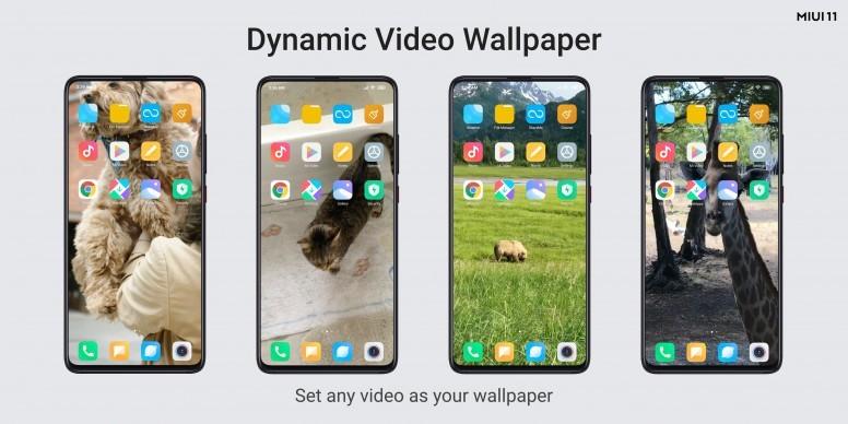 MIUI-11-Dynamic-Video-Wallpaper