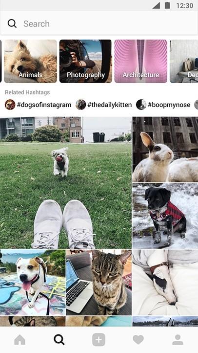 Instagram-nuevo-explorar-pestaña-anunciado