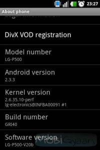 Actualización de Android 2.3 (Gingerbread) ahora disponible para LG Optimus One en India