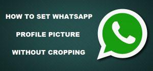 Cómo configurar la imagen de perfil de WhatsApp sin recortar [Beginner's Guide]