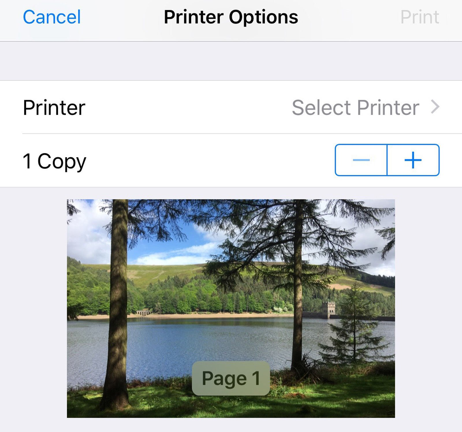 Crea un PDF en iPhone