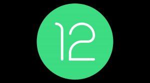 Cómo instalar Android 12 Developer Preview en teléfonos inteligentes Google Pixel