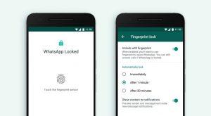 WhatsApp lanza la función de bloqueo de huellas dactilares a los teléfonos inteligentes Android