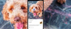 Google Lens estará disponible directamente en la aplicación Cámara.