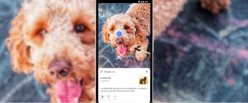 Google-Lens-estará-disponible-directamente-en-la-aplicación-de-la-cámara