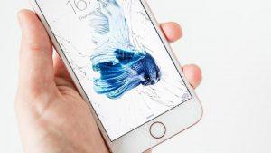 Cómo elegir el mejor seguro de iPhone
