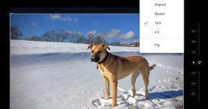 Edición más rápida y recorte más fácil con Google Photos