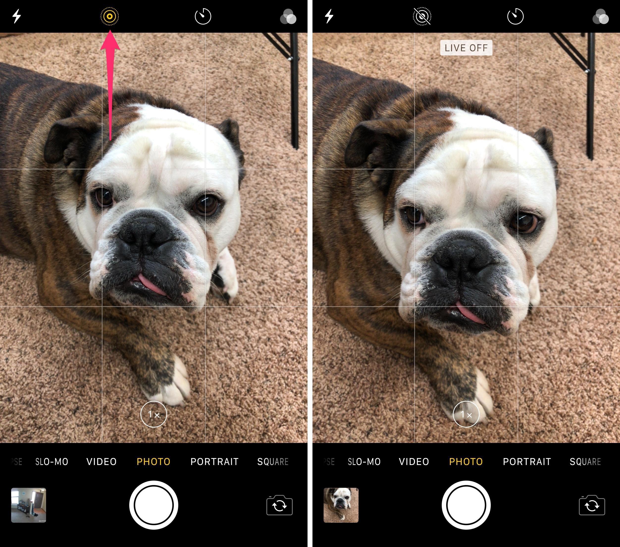 desactivar-las-fotos-en-vivo-en-la-cámara-aplicación-ios-11