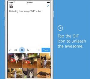 Twitter implementa la función de búsqueda de GIF y también permite a los usuarios agregar videos en Mensajes Directos
